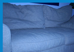 the den couch